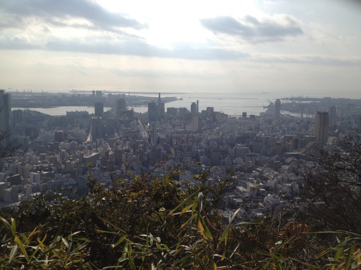 View of Kobe from Mt. Rokko